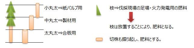画像に alt 属性が指定されていません。ファイル名: sustainable01.jpg